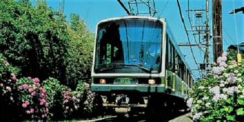 アジサイ電車333.PNG